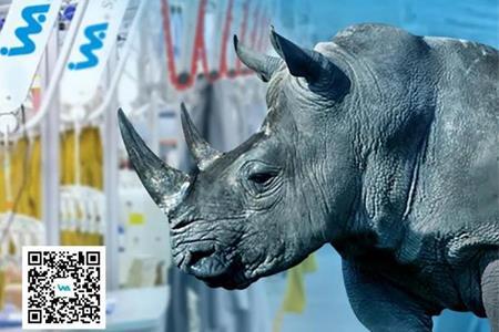 衣拿智能 | 阿里巴巴犀牛智造吊挂类设备合作伙伴
